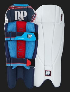 dp-vector-900-wicket-keeping-pads-1